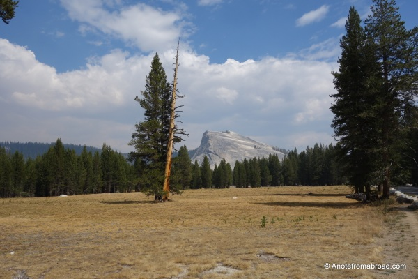 Tuolumne Meadows - Eastern Yosemite National Park