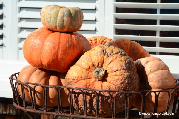 Pumpkin basket