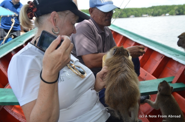Yep, that is a monkey on my lap.