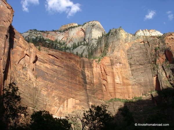 Panorama of rock walls, Zion