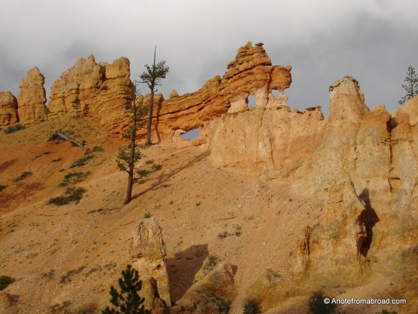 Rock formations above Mossy Cave