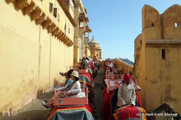 Elephant ride up the hill to the Amber Fort