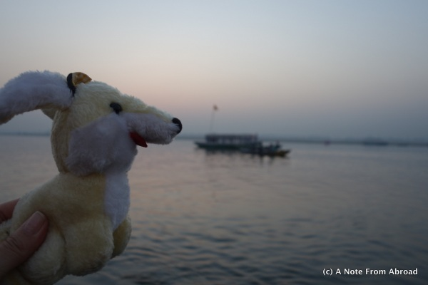 Gus on the Ganges