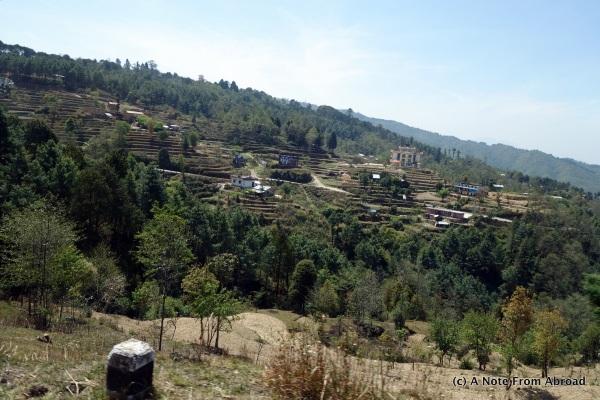 Terraced farming in rural Nepal