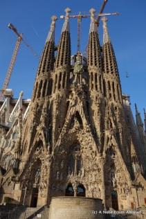 Nativity facade (note the green tree)