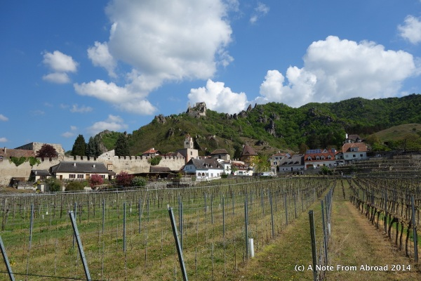 Vineyards and the castle high on the hill