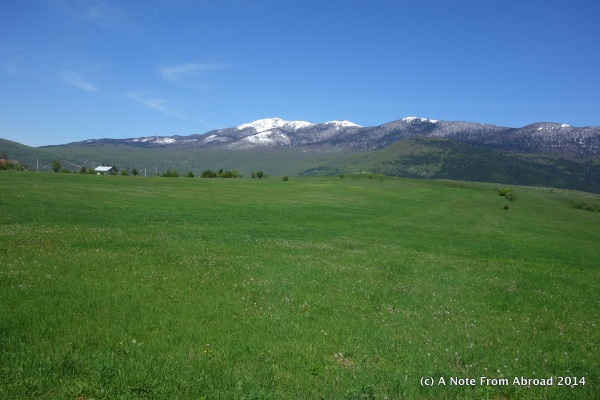 Green fields and snow capped mountains along our drive