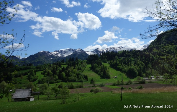Lush green fields and snow covered mountains