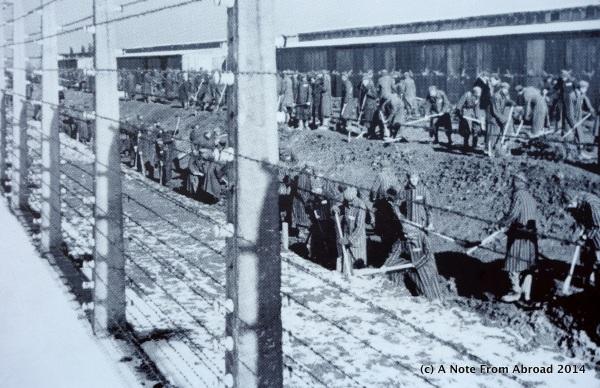 Work crews, perhaps digging mass graves???