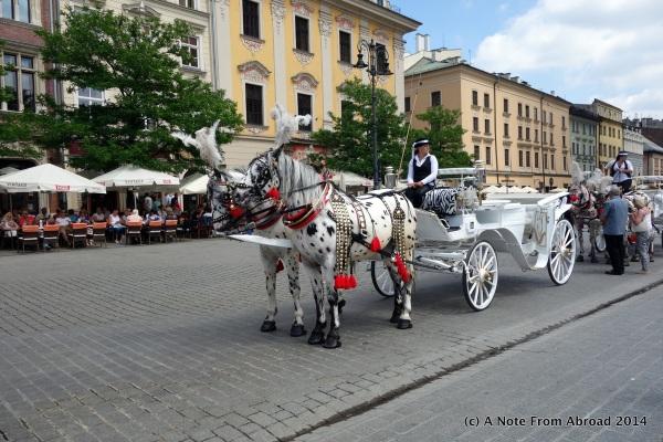 Dalmatian colored horses