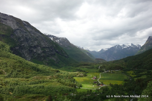Norway mountain meadow