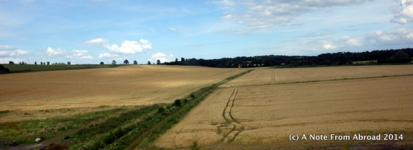 Fields along the train ride