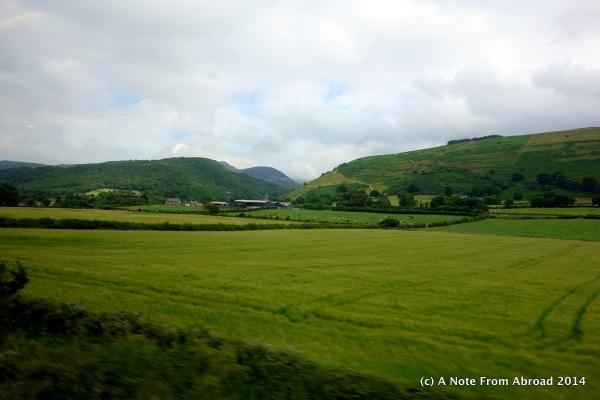 Green pastures as seen from the train - North Wales