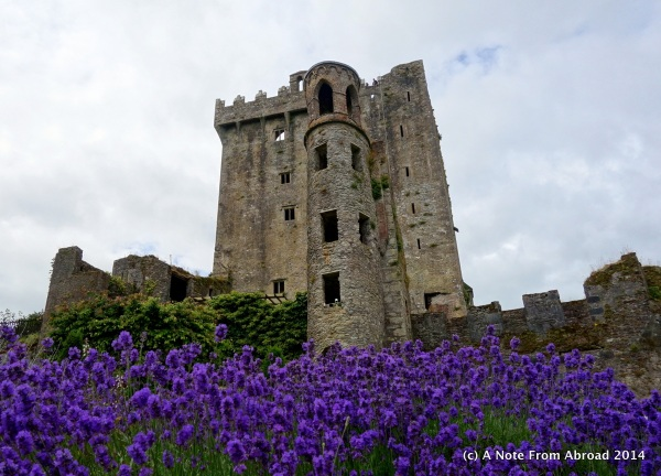 Blarney Castle ~ Ireland