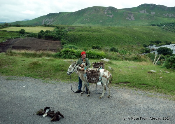 A man, his donkey, and his dog