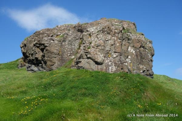 Big rock with wild flowers