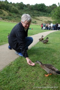 Tim feeding the ducks