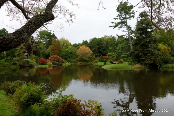 Acadia National Park, gardens perfect for weddings and photography