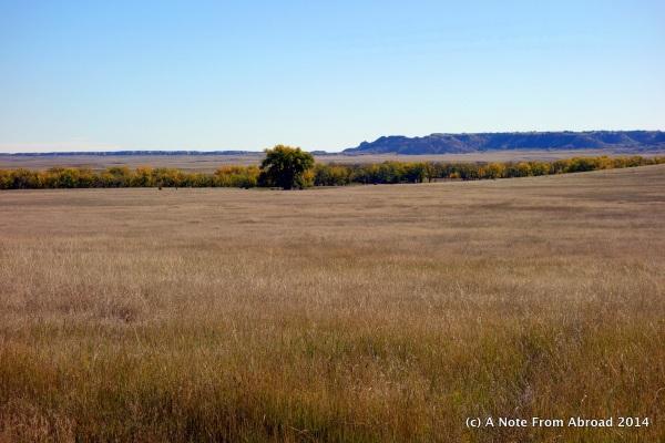 Wide open range land