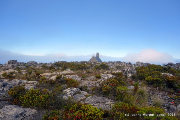 On top of Table Mountain, cold and partially shrouded by fog