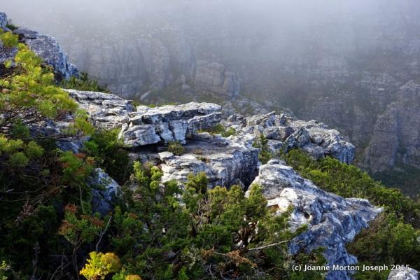Rock and shortened vista