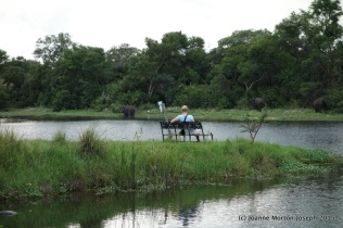 Sit and watch the elephants play in the water, or simply relax