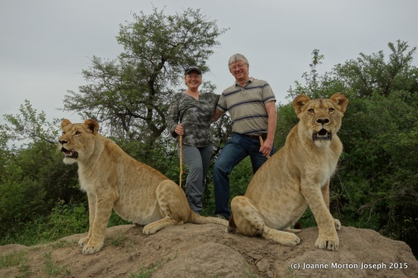 Tim and Joanne with two 19 month old lions