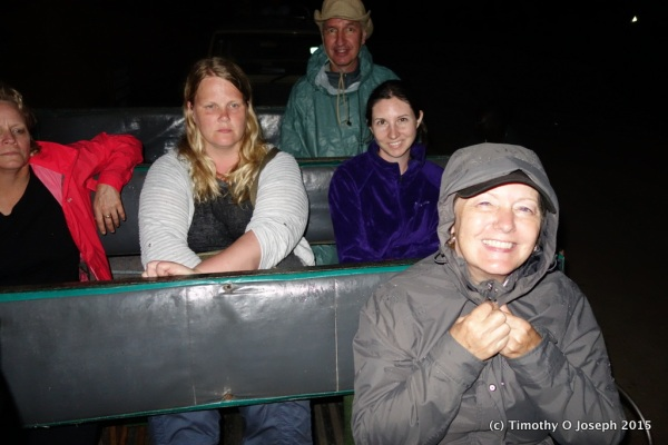 In the back of a pickup truck - following lions as they hunt