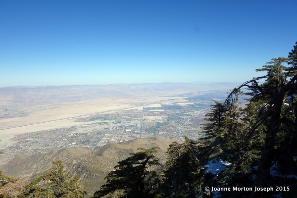 View of Palm Springs from Mountain Station