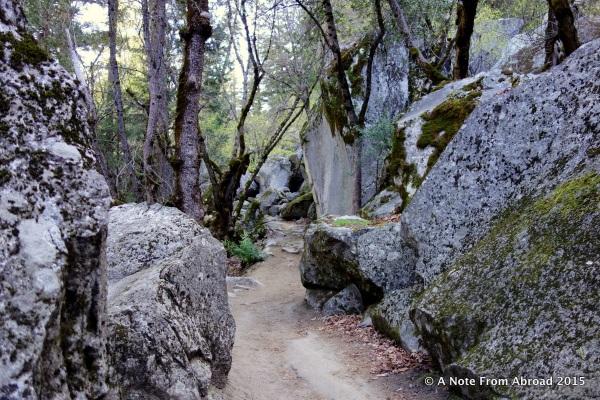 Pathway toward Mirror Lake