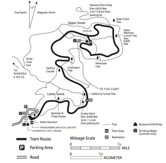 Map of Mariposa Grove and trails