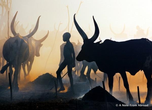 The Dinka of South Sudan
