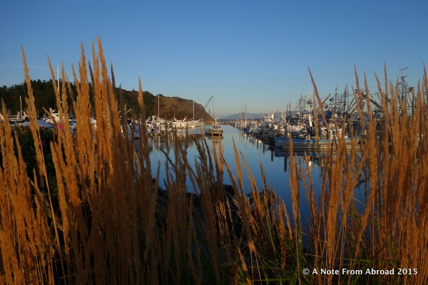 Harbor at Anacortes