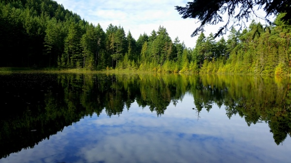 Jan and Mark took the dingy ashore and went for a hike. This is the pretty lake they saw.