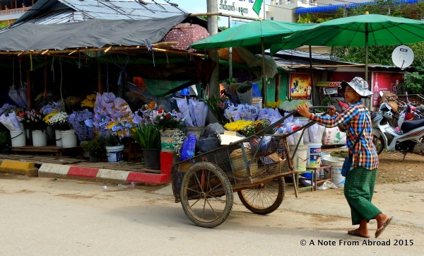 Push cart and flower stalls