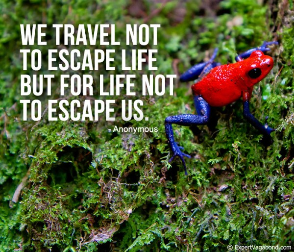 Why we travel...