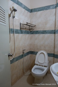 Shower and bathroom all one room