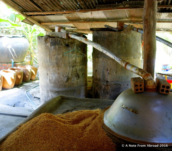 How rice wine is made in Cambodia