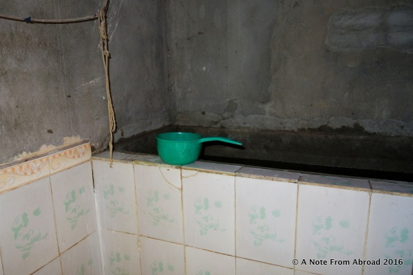 Green scoop used for bathing