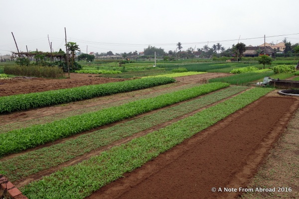 Track Organic Village