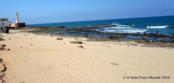 Along the beach