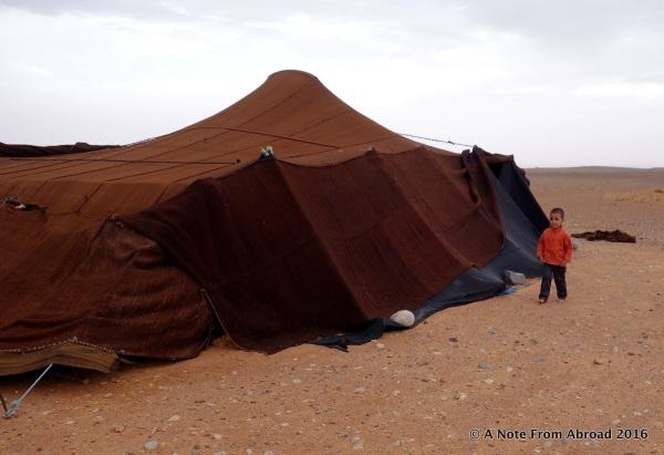 Berber tent camp