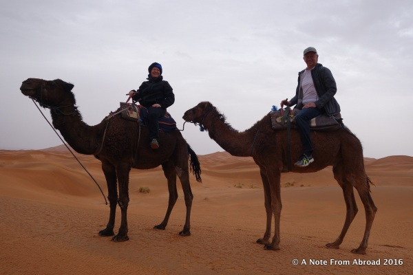 Tim and Joanne in the Sahara Desert on camels
