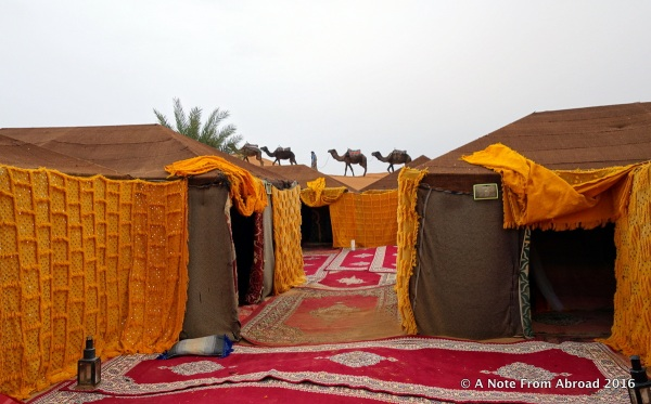 Tent camp where we spent the night in the Sahara Desert