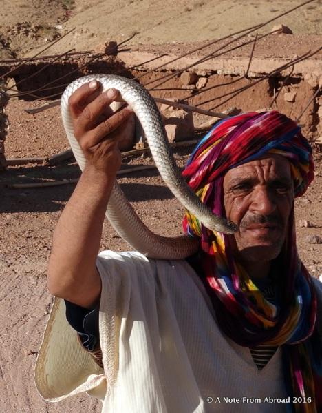 Snake charmer. Fine for a paid sending