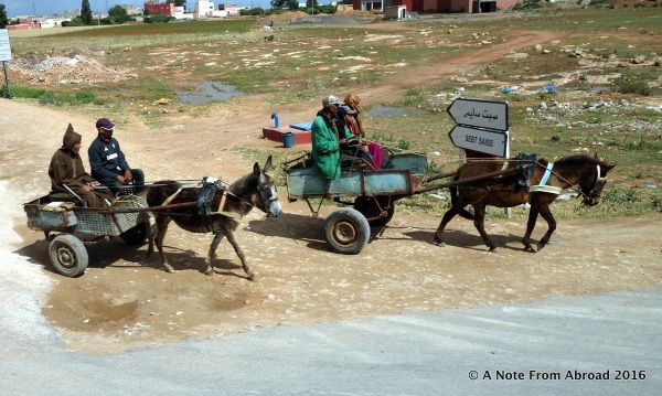 We passed many horse, mule and donkey carts along the way