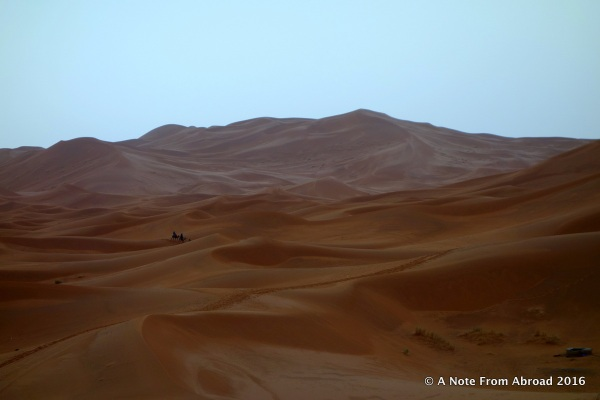 The breathtaking vista of the Sahara Desert