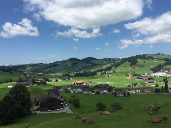 On the train ride between Appenzell and Umasch