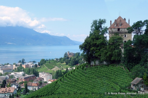Vineyards cover many steep slopes along the lake