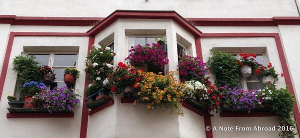 Cascades of flowers decorate windowsills